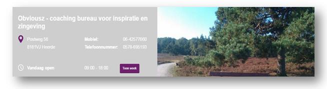Obvious maakte een bedrijfswebsite aan via Places Websites