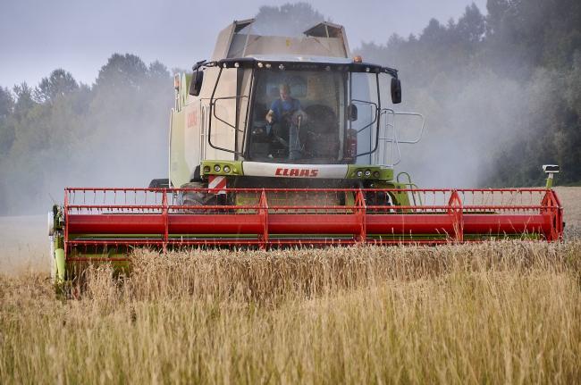 Stijging van inkomsten in de landbouw