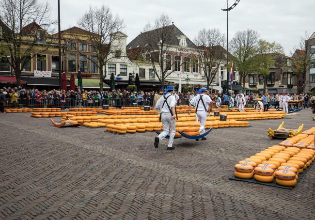 Best beoordeelde bedrijven in Alkmaar