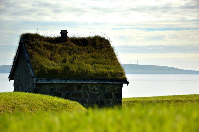 Rijke veengronden leggen basis voor achternamen Slagharen