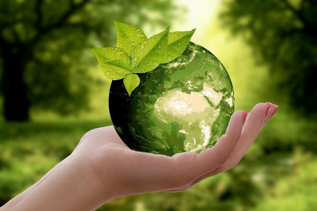 Wat kunt u als bedrijf doen aan de toekomst van de planeet