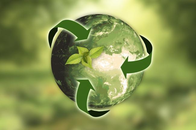 Groene producten vormen de sleutel tot duurzame marketing