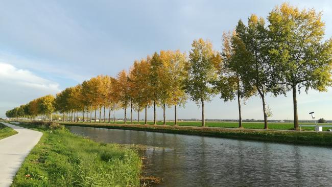 Places.nl stelde een lijst samen met de twintig meest voorkomende achternamen.