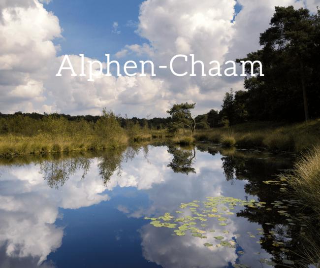 In Alphen-Chaam is (de) Jong de meest voorkomende achternaam.