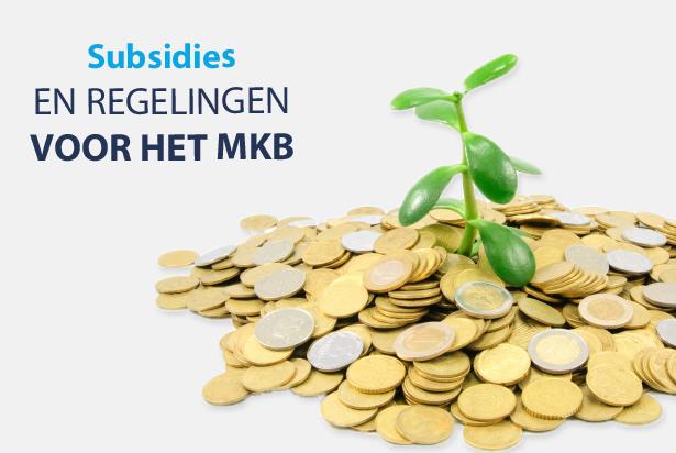 Subsidies en regelingen voor het MKB