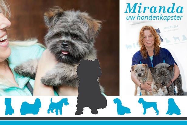 Miranda uw hondenkapster: 'Zonder veel moeite online goed zichtbaar'
