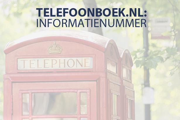 Zoek en vind: het informatienummer van Telefoonboek.nl