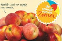 spaanse perziken of nectarines