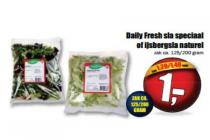 daily fresh sla speciaal of ijsbergsla