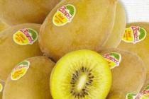 zespri kiwi gold
