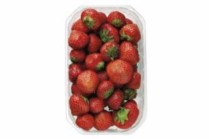 merkloos hollandse aardbeien 500 gram