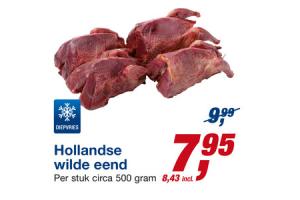 hollandse wilde eend
