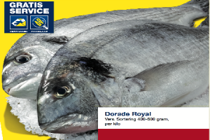 dorade royal