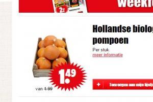hollandse biologische pompoen