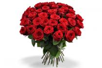 fairtrade rozen diverse kleuren bos 10 stelen
