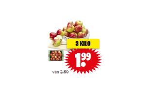 hollandse elstar appels