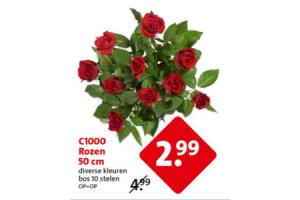 c1000 rozen 50 cm