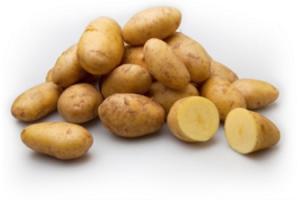 puree of vastkokende aardappel