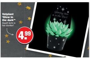 vetplant glow in the dark