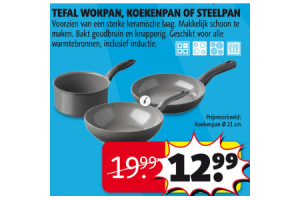 tefal wokpan koekenpan of steelpan