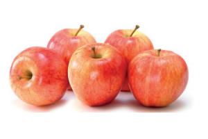 hollandse gala appels