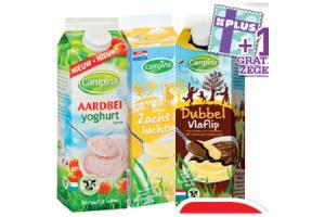campina zacht  luchtig fruityoghurt dubbelvlaflip seizoensvla of vlaflip