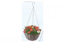 action hanging basket
