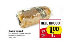 coop brood