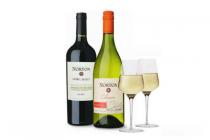 norton wijnen