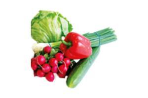 bosui knoflook komkommer krop sla radijs rode paprika of rode uien