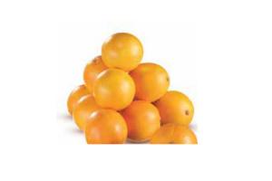 privilege handsinaasappels