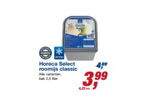 horeca select roomijs classic
