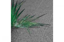 terrastegel graniet trendline