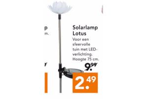 solarlamp lotus