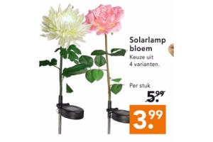 solarlamp bloem