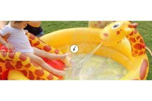 Giraffe Zwembad Voor 1999 Bestenl
