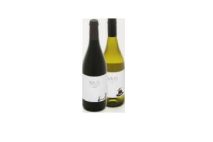 mus nederlandse wijn