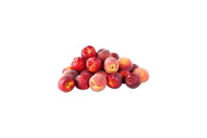 c1000 nectarines