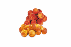 coop nectarines 750 gram