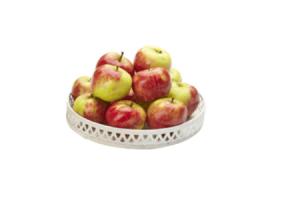hollandse elstar appels 15 kilo
