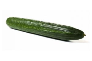 hollandse komkommer