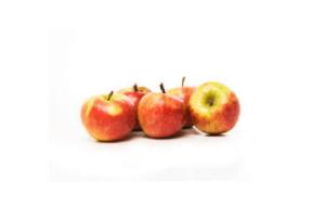 elstar appels 15 kilo