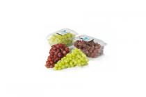 coop pitloze witte druiven bak 500 gram