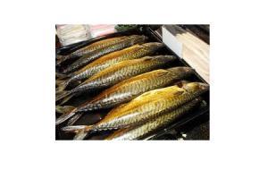 vomar makreel