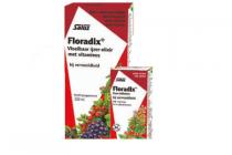floradix vloeibaar ijzer elixir