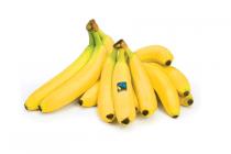 fairglobe bananen
