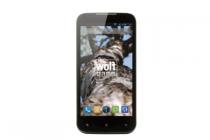 smartphone wolfgang at as45q1