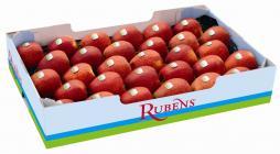 rubens appels in zak