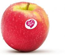 pink lady appelen