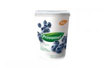 provamel soya yoghurt blauwe bessen